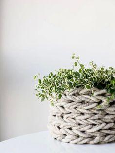 Gestrickter Pflanzenkorb ganz ohne Nadeln - Pflanzenfreude.de