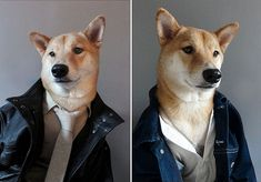 Menswear Dog, a dapper shibu inu, who has a taste for Ralph Lauren knit ties, Gant Rugger oxford shirts, Paul Smith suits, and the occasional vintage Stetson driving cap. Woof.