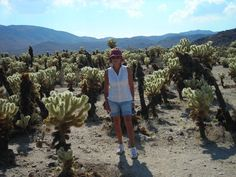 California 2008 - il deserto -