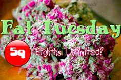 Unlimited 5g eighths for Fat Tuesday until we close at 1am !!! #lamesa #goodquality #medicated #stoned #fattuesday #tuesday #dank #nugs #fire #herb #five #gram #eighth #bomb #sd #caliweed #420