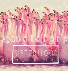 Sisterhood WILD WOMAN SISTERHOOD™. #sisterhood #sacredsisters #wildwomansisterhood #sacredsisterhood #rewild