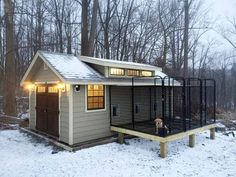 Customized kennel out of a garden shed