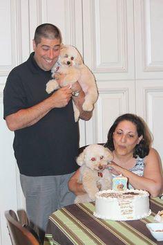 My Boys, Crosby Posteraro & Stanley Posteraro's Birthday Party! — with Crosby Posteraro. 1st Birthday Parties, My Boys, Dogs, Party, Animals, Animais, My Children, Animales, Animaux