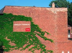 Toro: Ivy Wall http://arcreactions.com/5-highly-influential-online-marketing-practices-will-shape-2015/