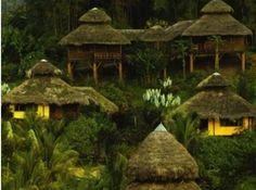 Arasha Tropical Forest Resort and Spa - Equateur