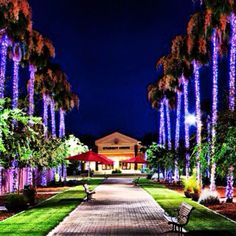 Grand Canyon University! I'll be attending in the fall.