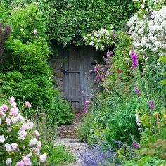 For an abundant garden, plant fragrant climbing roses and small flowering cherry trees at the back, fill the middle with peony, crocosmia and campanula and at the front, let the lavender flow