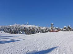 Maaliskuu: sininen taivas, valkoinen lumi ja auringonpaiste. Kaikki kohdallaan Rukan Vuosselin rinteillä. Ruka, Kuusamo. Outdoor, Outdoors, Outdoor Games, The Great Outdoors