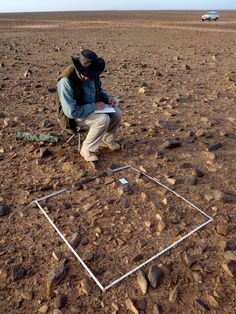 A Carpet of Stone Tools in the Sahara