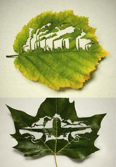"""We found this poster on a Tumblr blog (posters-for-good.tumblr.com). Created by Leagas Delaney for Plant for the planet, its message is:  """"Every leaf traps CO2"""".   Don't let Yasuni National Park's destruction contribute to CO2 in our atmosphere, and our trees. Please donate to the Yasuni-ITT Fund: mptf.undp.org/yasuni."""