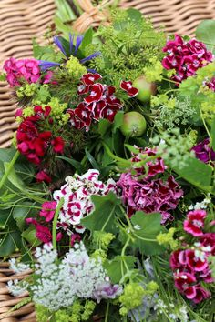 Sweet William natural sheaf for a William. Natural funeral flowers for green burials by Tuckshop Flowers, Birmingham Sympathy Flowers, Growing Flowers, Green Burial, Flowers, Mums Flowers, Simple Flowers, Container Flowers, British Grown Flowers, Funeral Flowers