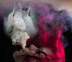 Diamond painting cross stitch kits girl with wolf sticker diamond embroidery pattern diamond mosaic icons rhinestone pictures Beautiful Wolves, Animals Beautiful, Wolf Call, She Wolf, Big Bad Wolf, Wolf Spirit, Dog Wallpaper, Pics Art, Red Riding Hood