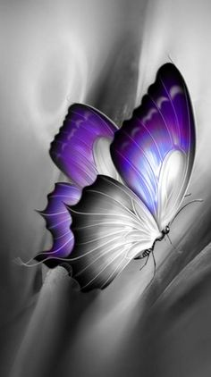 Wallpaper… By Artist Unknown… Wallpaper … Von Artist Unknown … Purple Butterfly Tattoo, Butterfly Clip Art, Butterfly Drawing, Butterfly Pictures, Butterfly Painting, Butterfly Wallpaper, Abstract Wolf, Beautiful Butterflies, Oeuvre D'art