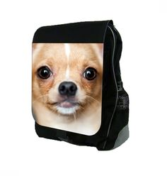 """Chihuahua Up-Close Print Design TM School Backpack. Multi-Purpose Backpack that expands to approximately 6"""" and is made to fit folders, binders, notebooks, school supplies, laptops (17"""" and less) and other accessories, while being durable and light enough to transport; Durable Black Polyester; Front Flap with Vibrantly Printed Design;. Large Zippered Pocket with Several Inner Pockets for Extra Organization;Front Flap Closes with Buckle Clasp ; Adjustable Straps; Dimensions are…"""