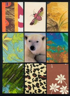 Nature - Artist Trading Card Backgrounds
