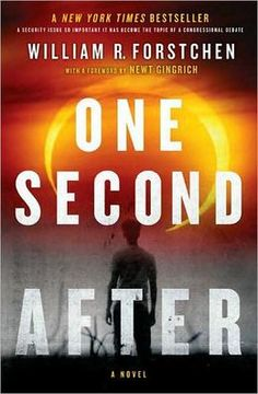 One Second After by William R. Forstchen. A real page turner, and a terrifying reality check...