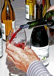 Wine tasting at local wineries.