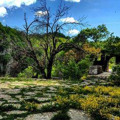 On the road series. Greece  #agiaparaskevi #vikosgorge #monastery #ruins #gorge #spring #romantic #ontheroad #audia4 #epirus #mountains #audi #colors #bliss #yellow #thelonelytraveler #travelphotography #travel #vacation #traveladventures #roadtrip #wild #naturephotography #nature #inthewild