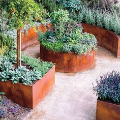 This garden has a secret: Virtually every plant in it can be put on your plate or in a vase. It doesn't look like a typical edible garden, which is exactly the point