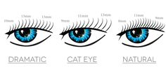 Dramatic lashes are typically longer in length and can sometimes be a thicker eyelash extension that is applied. This produces a more prominent look and is ...