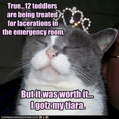 12 toddlers are being treated for lacerations in the emergency room. But it was worth it… I gotz my tiara.
