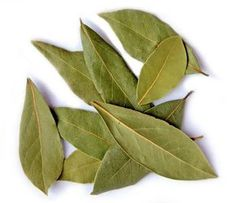 Laurel Leaves (Bay Leaves) Whole - Lydian Global Sourcing Inc. Laurel Leaves, Bay Leaves, The Growers Exchange, Bay Leaf Tea, Bunion Remedies, Trees To Plant, Plant Leaves, Get Rid Of Bunions, Herbs