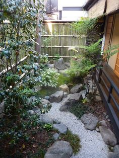 narrow garden path: incorporating my notion of bamboo fence and stone steps