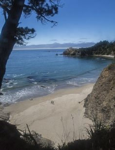 Anchor Bay Beach, California  ~ Conde Nast has called it one of the ten best beaches in Northern California!