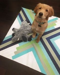 Quilts + Beau – Home Made Emily Jane Jellyroll Quilts, Easy Quilts, Modern Quilting Designs, Modern Quilt Patterns, Quilt Modern, Quilting Tutorials, Quilting Ideas, Quilting Projects, Fat Quarter Quilt