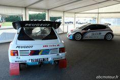 Peugeot 205 T16 et 208 T16