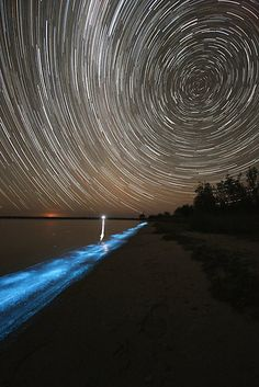 Star trails in the southern sky over bioluminescence in the waters of the Gippsland Lakes in eastern Victoria, Australia ~