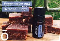 I haven't tried this recipe yet but it sounds so delicious that I just had to share! doTERRA's peppermint oil is fantastic in slices, bliss balls and cakes. If you want to give your chocolate baked goods a lift, try adding a couple of drops of doTERRA's Peppermint oil. To buy doTERRA's Peppermint Oil click here. Ingredients 2 ½ cups Raw Almonds ½ teaspoon Himalayan Salt 2 ½ cups Soft Pitted Medjool Dates 5 Tablespoons of Coconut Oil 4 Tablespoons Raw Cacao Powder 1 Pinch ...