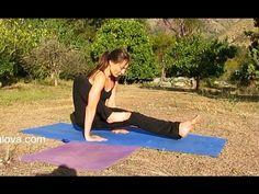 Hatha Yoga real time 45 min - Hatha Yoga tiempo real clase completa