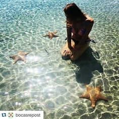 La mejor forma de fotografiar a las estrellas de mar dejándolas posar tranquilas.  The best way to photograph starfishes letting them pose on their own.  #Repost @bocasrepost  #Repost @lau_fox  Playa Estrella - Star fish beach. Took a collectivo across the island to Bocas Del Drago followed by a walk through the jungle and along a gorgeous secluded beach to get to Playa Estrella. The water was calm and crystal clear dotted with these giant orange starfish! So frickin cool man!  #panama…