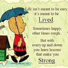 Just live....https://scontent-a.xx.fbcdn.net/hphotos-prn2/t1/1511215_809918529022815_525217544_n.jpg