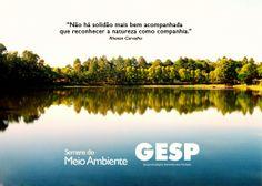 Grupo Ecológico Sentinela dos Pampas: Semana do Meio Ambiente 2014