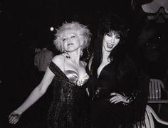 Elvira, Mistress of the Dark (official) Cyndi Lauper