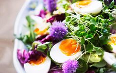 Kesäsalaatti / Summer salad / Kotiliesi.fi / Kuva/Photo: Sampo Korhonen/Otavamedia Summer Salad, Salad Recipes, Eggs, Breakfast, Ethnic Recipes, Food, Morning Coffee, Essen, Egg