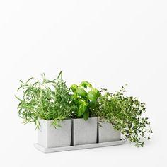 Herb pots. Scandiavian modern herb and small rectangular flowerpots- Krukor för orter, krydor, småblommor- Åhléns- Hem & inredning - Köp online på åhlens.se!