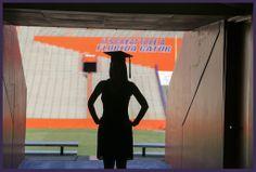 A University of Florida Graduation Session - Emily Katharine Photography Nursing Graduation Pictures, College Senior Pictures, Grad Pics, College Graduation, Graduate School, Senior Photos, Grad Pictures, Senior Photography Poses, Graduation Photography