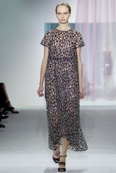 Christian Dior Spring 2013 Ready-to-Wear Collection Photos - Vogue