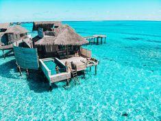Bora Bora vs. the Maldives : Which is better for a honeymoon? - JetsetChristina