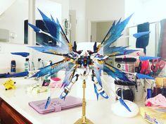 1/144 RG Strike Freedom Gundam Effect Wings Of Light