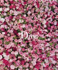 Dior et l'impressionnisme Granville rose pink Miss Dior, Purple Aesthetic, Aesthetic Vintage, Everything Pink, Wall Collage, Wall Art, Aesthetic Wallpapers, Christian Dior, Pretty In Pink