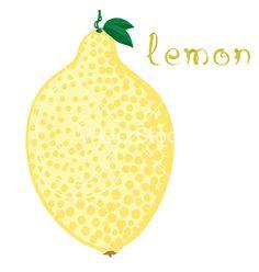 Lemon vector by KsanasK on VectorStock®