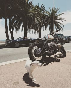 Sometimes all lines up... #crd58 by @caferacerdreams & CO  #motorcycles #motorcycle #crd #caferacerdreams #bmw #r100 #nice #france #lovedogs #wellvesomecars