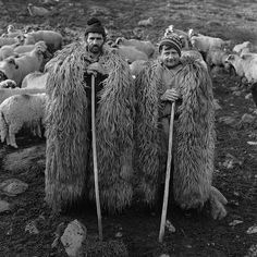 Men in Sheep's clothing in Romania. Gaucho, Wooly Bully, Fantasy, Vintage Photographs, Old Photos, Lion Sculpture, Culture, Statue, Black And White