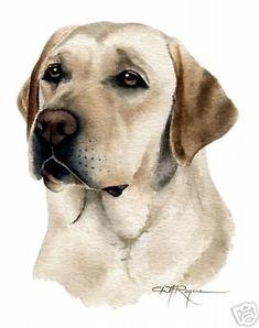 labrador retriever profile silhouette - Google Search #labradorretriever