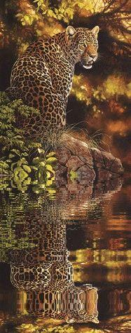Leopard                                                                                                                                                      Mehr