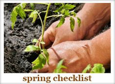 Seasonal Checklists: spring, summer, fall and winter!
